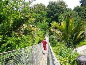 NZの熱帯雨林と天然温泉を満喫!「モレレ ホット スプリングス ロッジ」