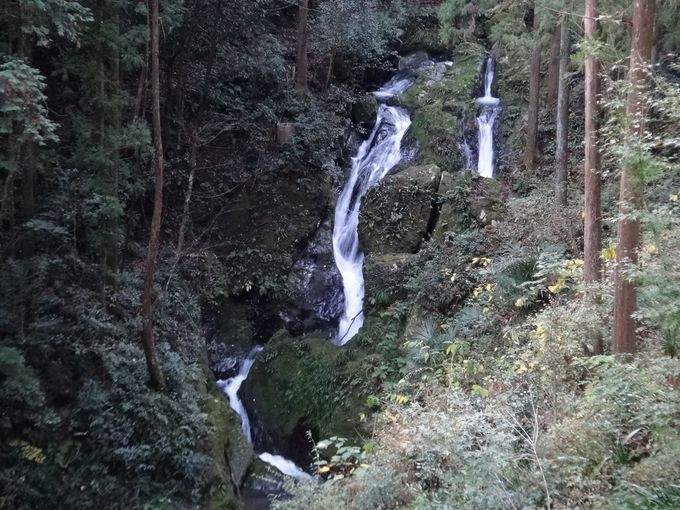 夫婦滝までお散歩
