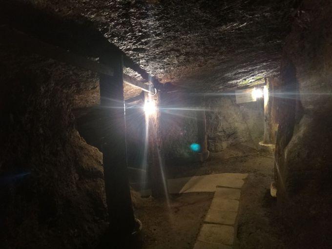 世界唯一の見学用琥珀採掘坑道跡