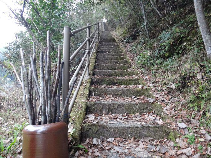 久保谷セラピーロードの始まりは長い階段