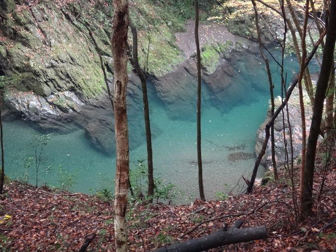 透明度が高く美しい久保谷川