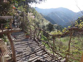 見渡す限り山の農家民宿「どこも山」で徳島の田舎体験!