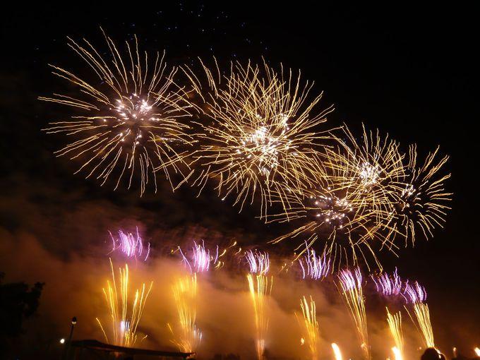 音楽・照明・花火が三位一体となった花火ショー