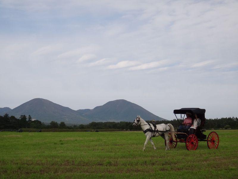 鹿追町WWRCの馬に乗って十勝の自然を思いっきり楽しむ!