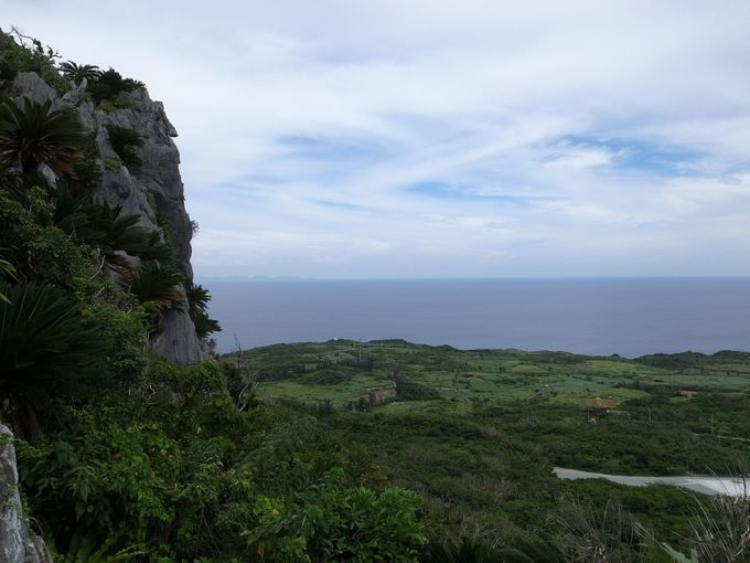 最北端の岬と美ら海を展望