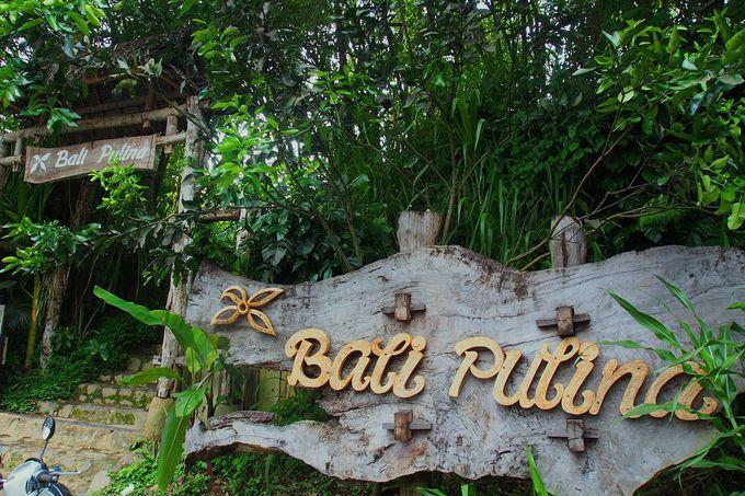 観光ルートに組み込みやすい立地の「バリ プリナ」