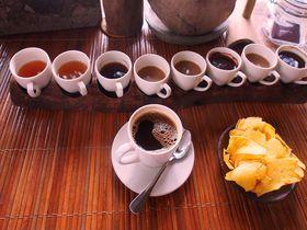 ウンチは魅惑のスパイス!バリ島で「コピ・ルアック」体験