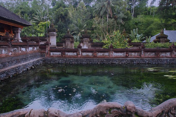 こんこんと湧き出る聖なる泉