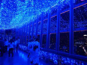 夏イルミの決定版!東京タワー「天の川イルミネーション」2016