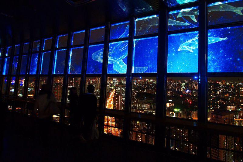 2015は空飛ぶイルカ!東京タワー×夜景×プロジェクションマッピングの競演が凄い