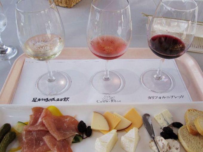 ワインテースティングはワイン畑を眺めるテラス席で