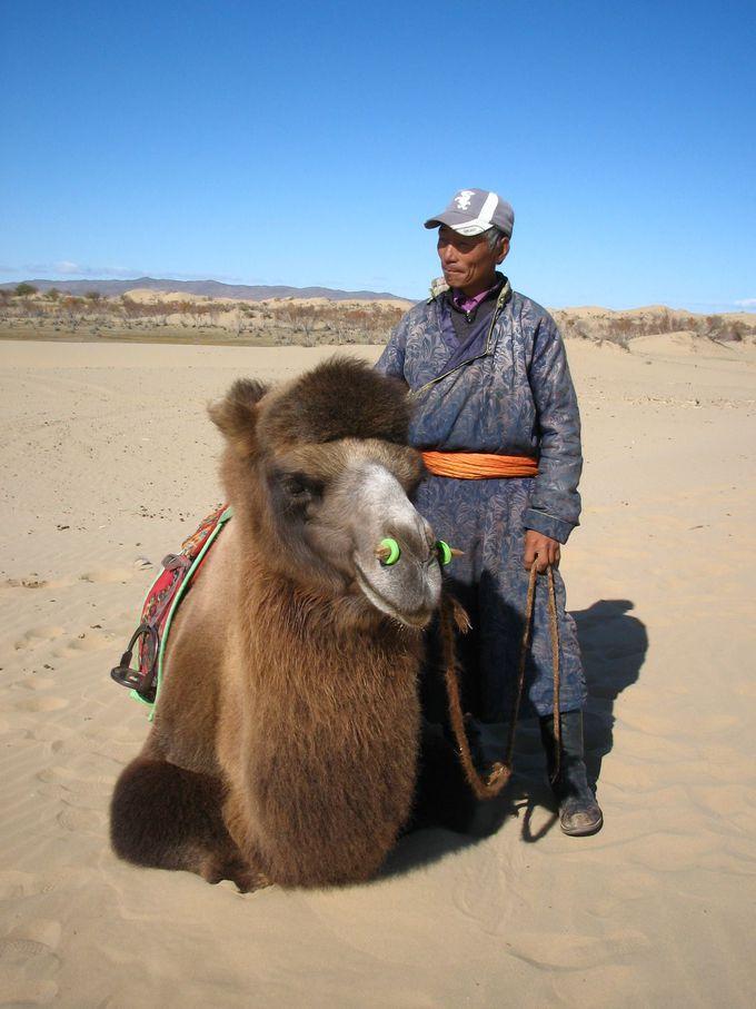 モンゴルの草原で暮らす人々の生活を体験