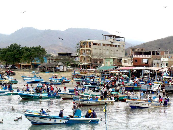 エクアドルのクジラ観光船は『プエルト・ロペス』から