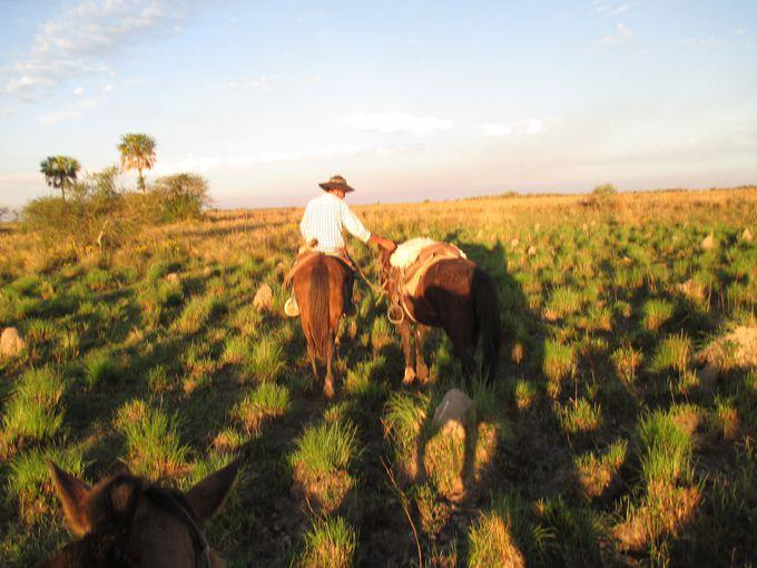 イベラ湿原での生活を知るアクティビティ