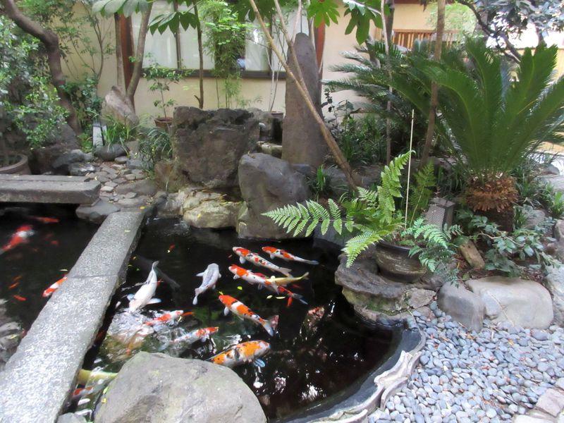 駅近で雰囲気抜群!身軽に京都を満喫するなら「旅館 銀閣」で