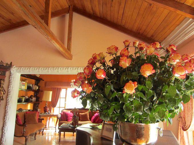 色鮮やかなバラに囲まれて
