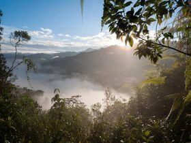 世界最多の鳥類に出会う!南米エクアドル「ベラビスタ」は正に森の楽園にあるロッジ