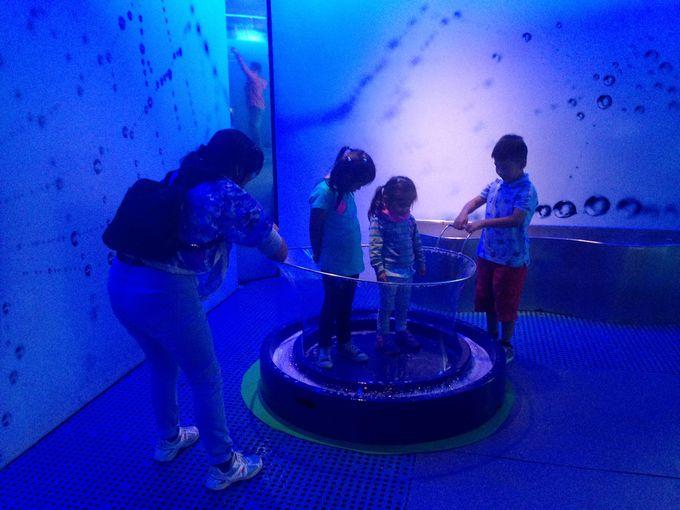 3.YAKU水博物館