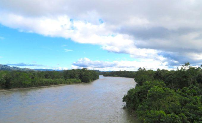 アマゾンが始まるナポ県「ミサワジ」