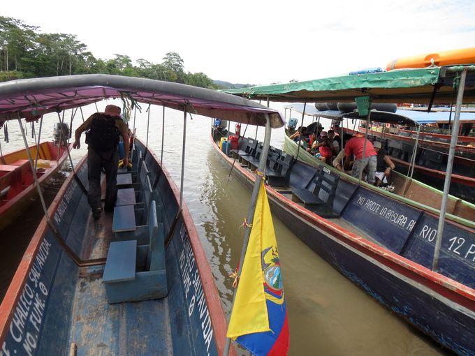 バラエティー豊かなアマゾンアクティビティ
