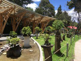 「キト植物園」はエクアドルの多種多様な植物の宝庫