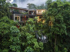 森の楽園を空中散歩!エクアドル「マシュピロッジ」で神秘的な滞在を