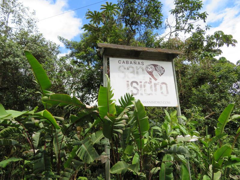 エクアドルの緑と鳥の楽園「サン イシドロ ロッジ」で森林浴を楽しむ