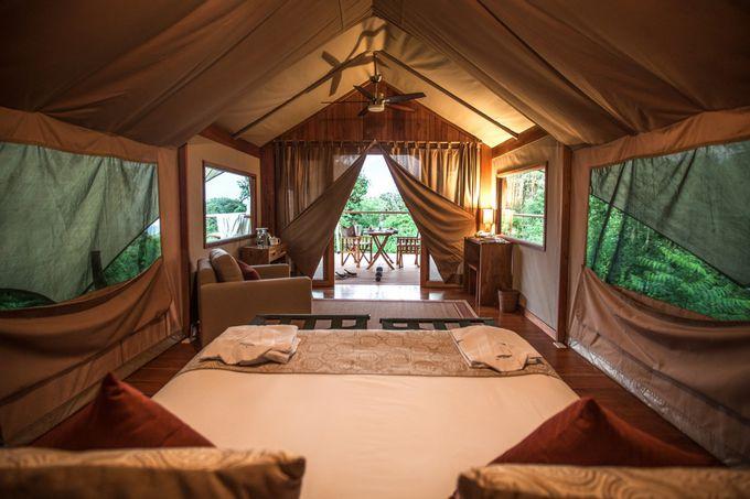 ガラパゴス サファリ キャンプ