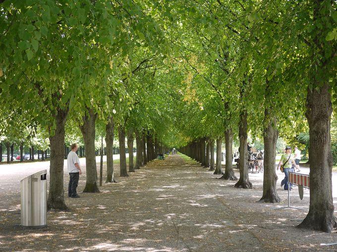 ヘレンハウゼン王宮庭園の営業時間と料金