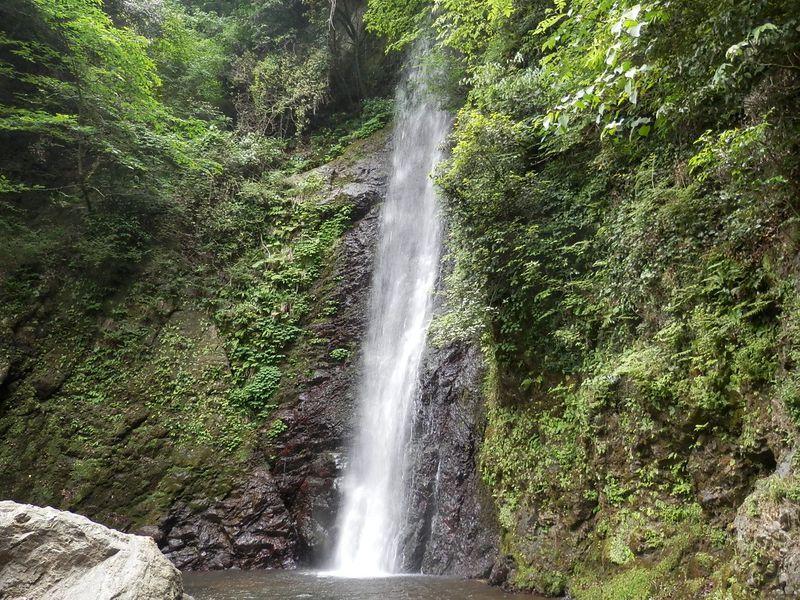 滝の水がお酒になった「孝子物語」の舞台。養老の滝でマイナスイオンを浴びる!