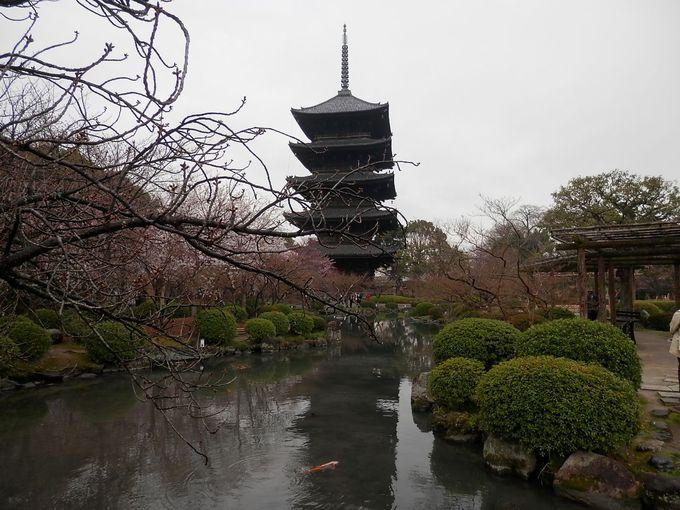 平安から続く古都京都のシンボル、日本の情景・東寺(とうじ)