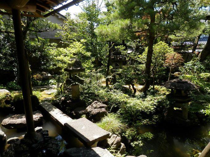 野村家の庭園がまた素晴らしい