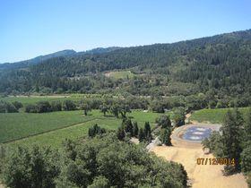 カリフォルニアの人気ワイン産地、ナパバレーに行ってみよう