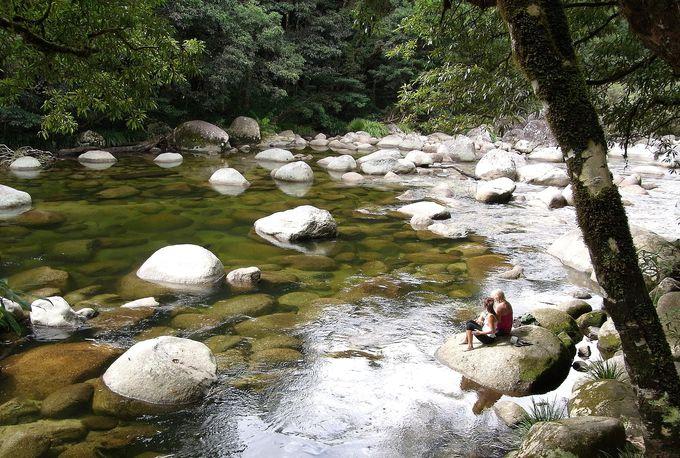 世界遺産モスマン渓谷を散策