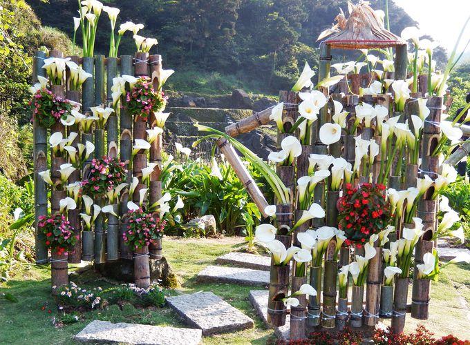 竹子湖へのアクセス