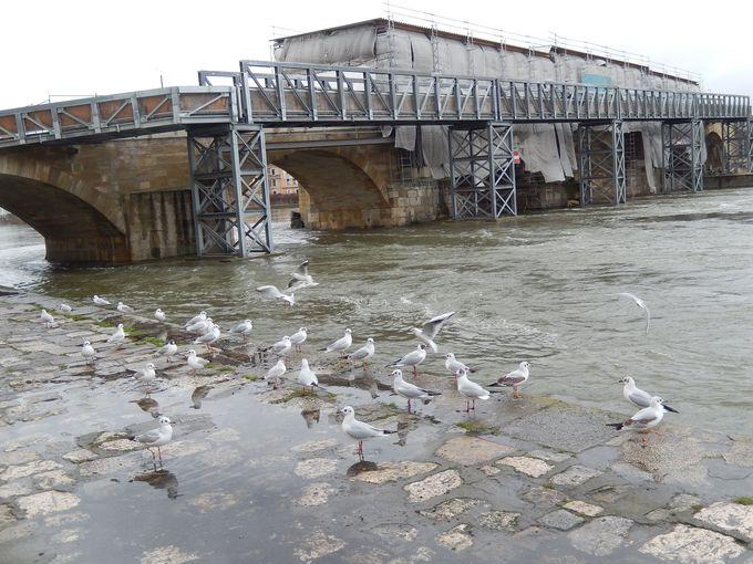 最古1 ドナウ川にかかる石橋