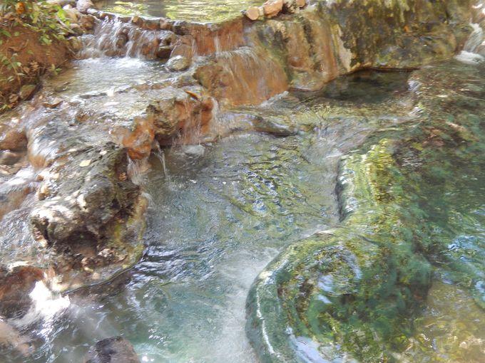 これぞ天然のジャングル温泉!