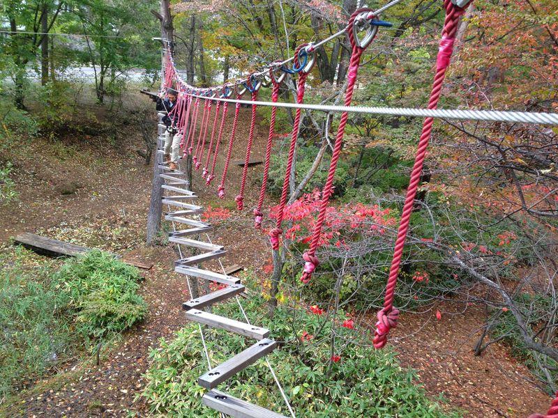 森の空中トレッキング!草津フォレストステージ
