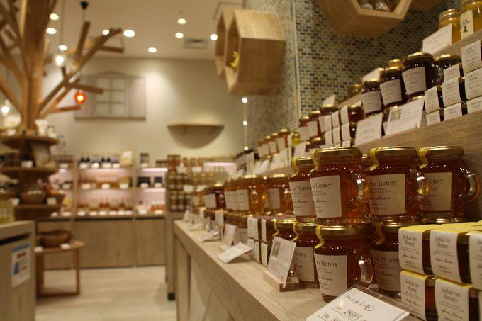 金沢産の蜂蜜と世界の蜂蜜が買える店「みつばちの詩工房」