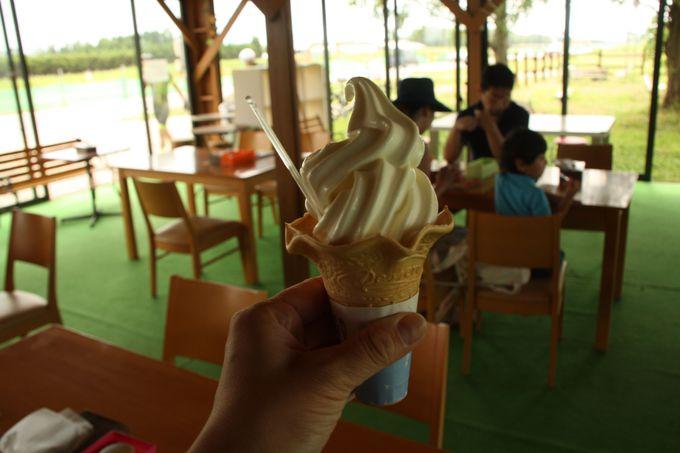 内灘ソフトクリームブームの元祖、ホリ牧場