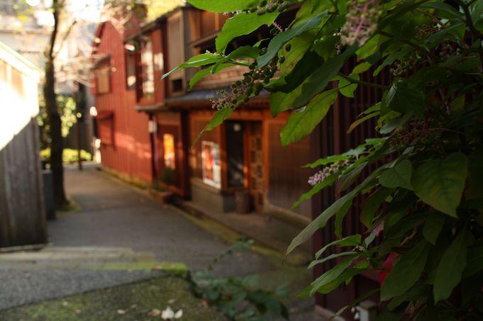 古都金沢の情緒に浸る!「ひがし茶屋街」「主計町茶屋街」の街並み散策