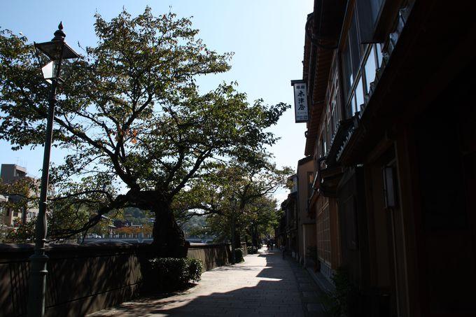 浅野川の流れに寄り添う茶屋街