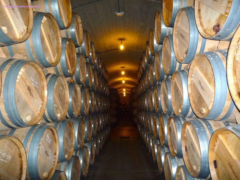 世界屈指のワイン生産地、スペイン「アロ」でワイン三昧の旅!
