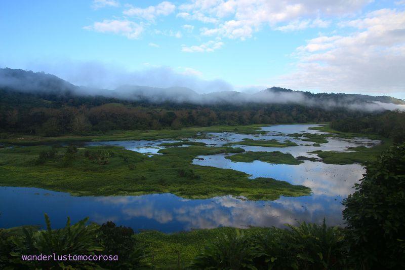 ブラジル、カカオコーストにあるカカオ農園『プラ ヴィダ』でシンプルライフ体験!