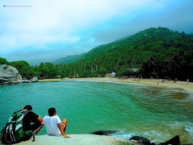 自然の宝庫、ビーチと森林が美しい楽園