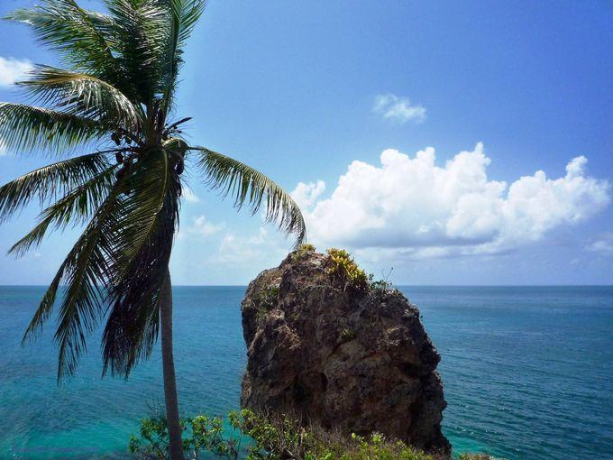 1キロ平方メートルの島?!サンタ カタリーナ島
