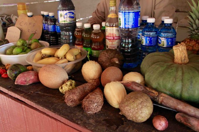 キューバ随一のモヒートをオーガニックタバコ農園で!