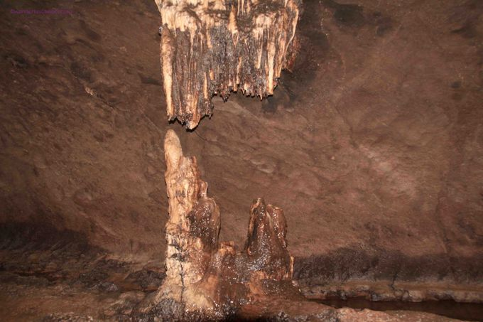 ツアーのハイライト!真っ暗な洞窟内に天然地下水のプールが