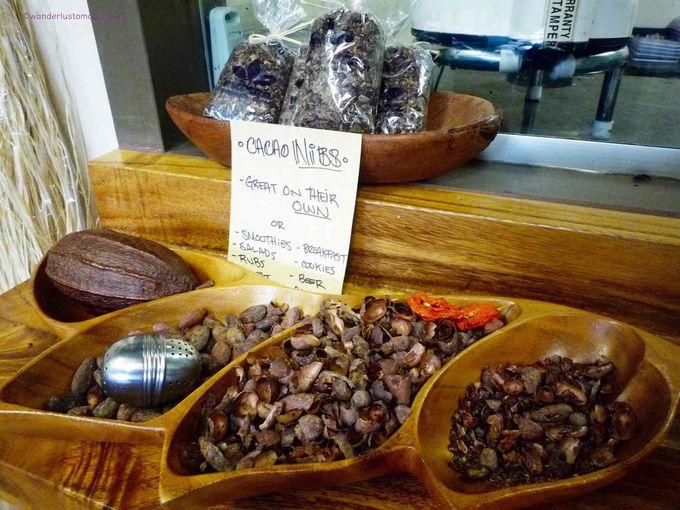 ビーン トゥ バー (Bean to bar) の本格的・個性派チョコレートファクトリー