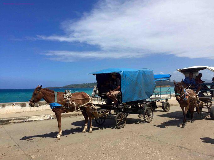 5.バラコア市内の馬車の風景